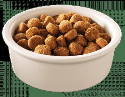 dog-food-element